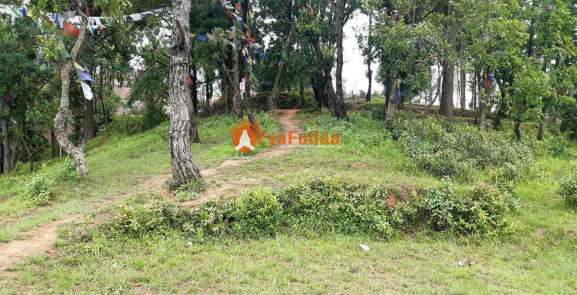 land-for-sale-in-whitegumba-big-0