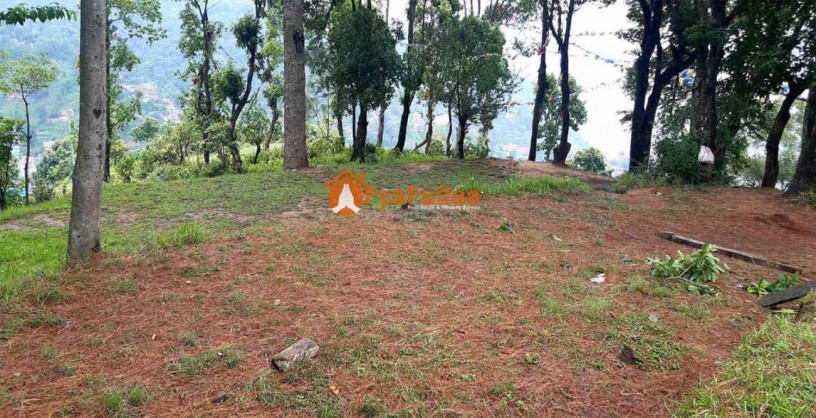 land-for-sale-in-whitegumba-big-2