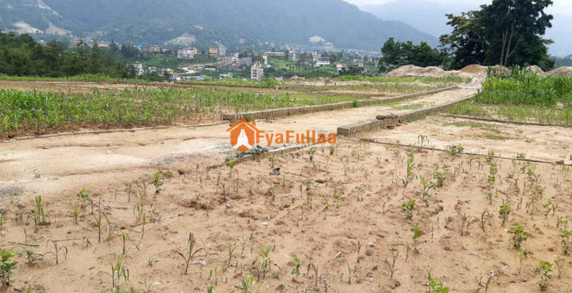 land-sale-in-gokarna-big-1
