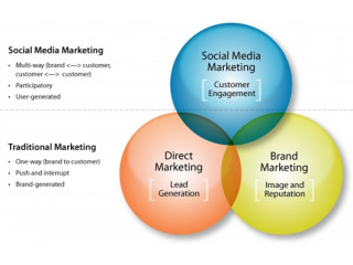 Online Internet Marketing Company Jaipur, Web Consultant Jaipur