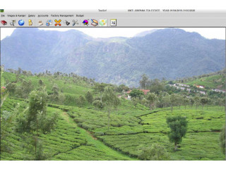 Tea Garden Software, Tea Garden Management system by  EBS Software Solution.