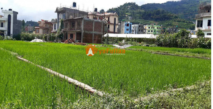 land-sale-in-dahachok-big-2
