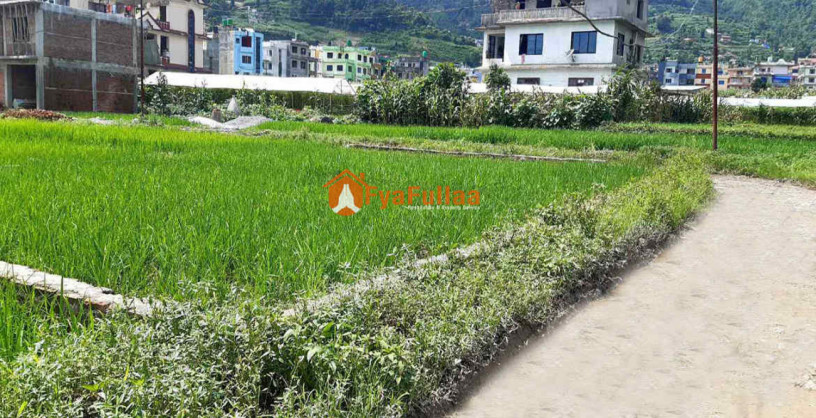 land-sale-in-dahachok-big-1