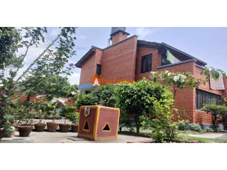 House rent in Panipokhari