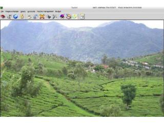 Tea Garden Software, Tea Garden Management system by  EBS Software Solutio