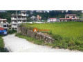 land-sale-in-khadka-bhadrakali-small-0