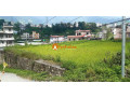 land-sale-in-khadka-bhadrakali-small-1