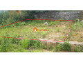 land-sale-in-whitegumba-small-0