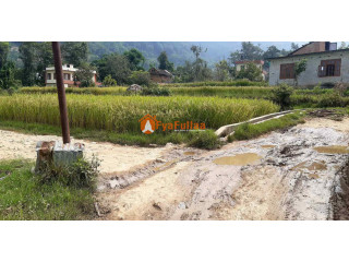 Land sale in Lubhu