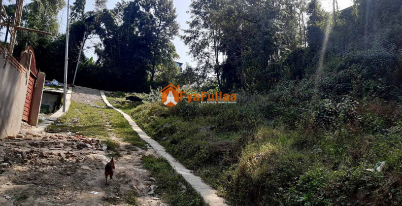 land-sale-in-thali-big-2