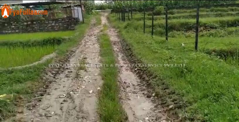 land-sale-in-budhanilkantha-big-1