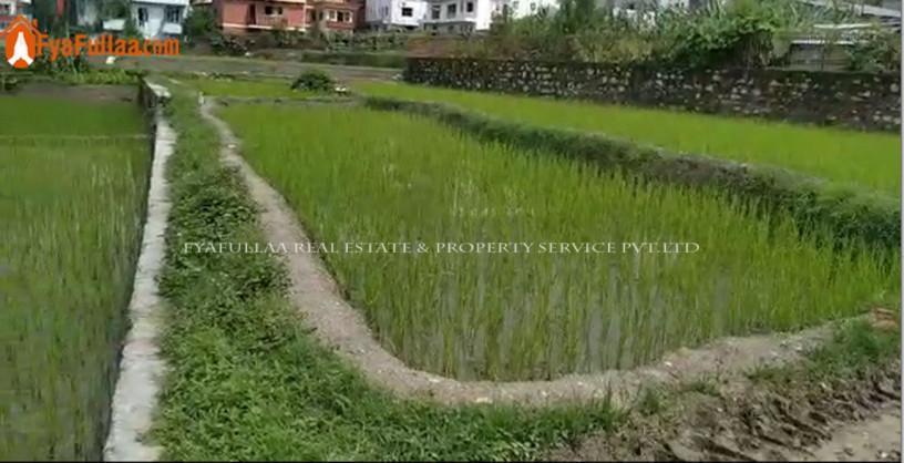 land-sale-in-budhanilkantha-big-0
