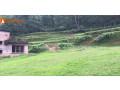 land-sale-in-godawari-small-1