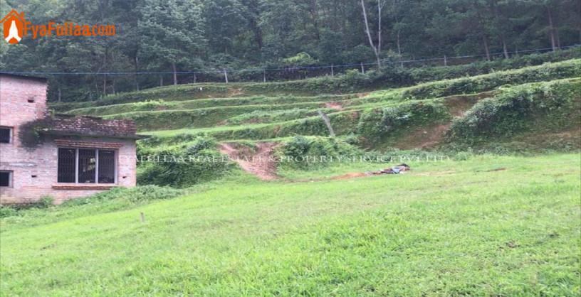 land-sale-in-godawari-big-1